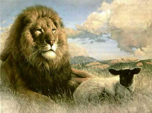 Lion_and_lamb_002